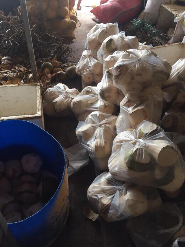 Những quả dừa đã được làm trắng