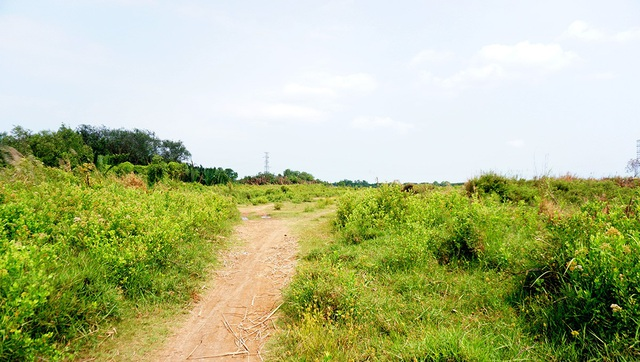 Đường dẫn vào khu đất.