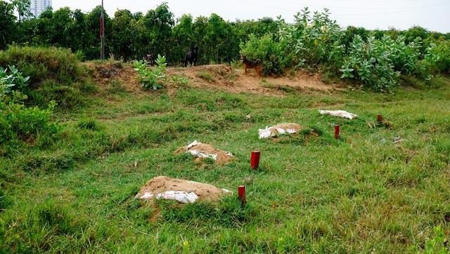Những ngôi mộ vẫn chưa được dời đi bên trong khu đất 30ha.