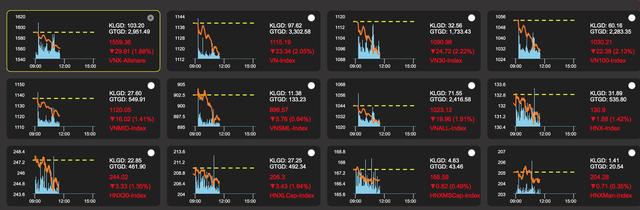 """Bán tháo toàn thị trường, chứng khoán """"đỏ lửa"""" (đồ thị: VDSC)"""