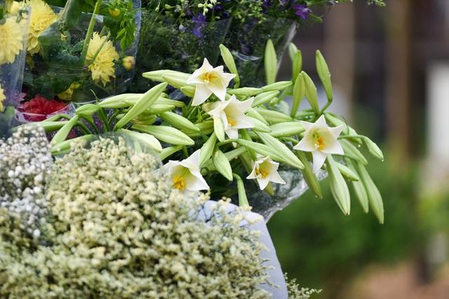 Năm nay thời tiết diễn biến thất thường nên hoa loa kèn bông cũng nhỏ hơn so với mọi năm. Trung bình, một bó hoa có giá từ 40-60 nghìn đồng.