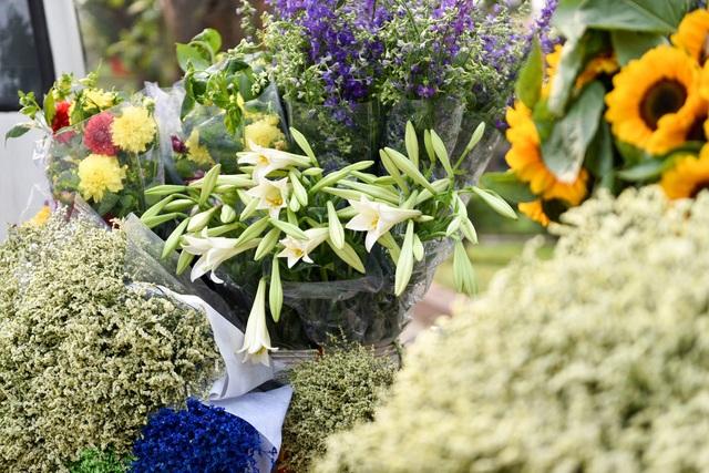 Ở Hà Nội, loa kèn thường được trồng nhiều ở làng hoa Tây Tựu, Quảng Bá, để hoa kịp nở vào tháng 4 người trồng hoa phải trồng củ vào tháng 9, tháng 10 trước đó.