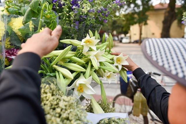 Mùa hoa loa kèn thường bắt đầu từ cuối tháng 3 và kéo dài đến hết tháng 4