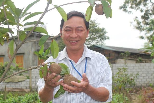 Mỗi năm từ khu vườn này đem lại thu nhập cho gia đình anh từ 200-300 triệu đồng