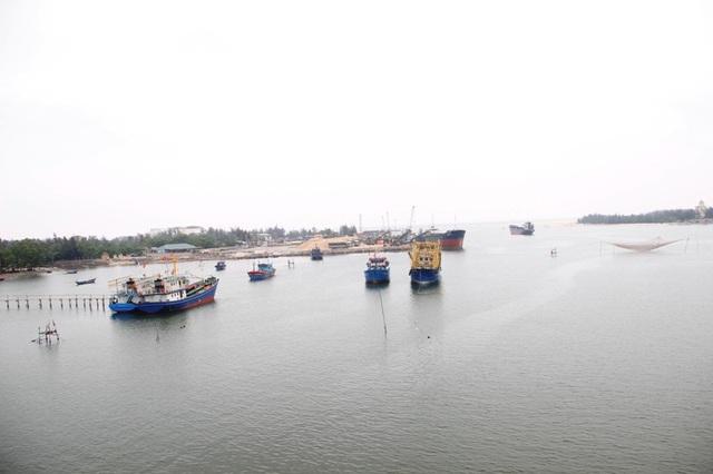Xuất hiện tình trạng cá chết trôi dạt vào bờ biển Quảng Trị