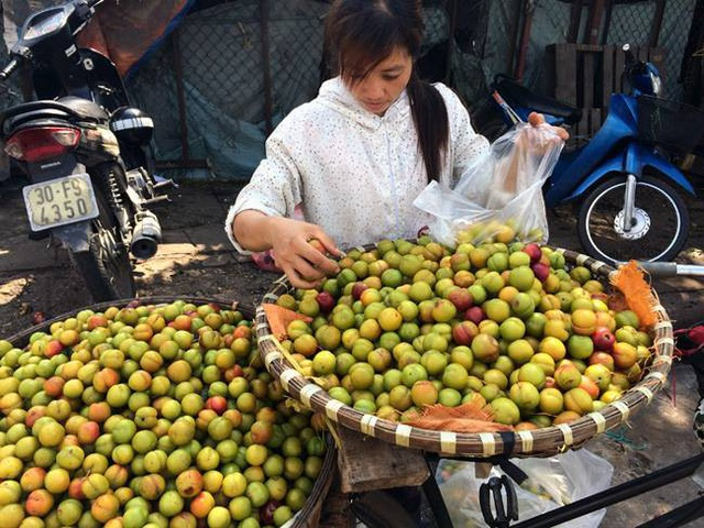 Có một lượng không nhỏ mận Trung Quốc bán trên thị trường mà không ít người tưởng là mận Việt Nam