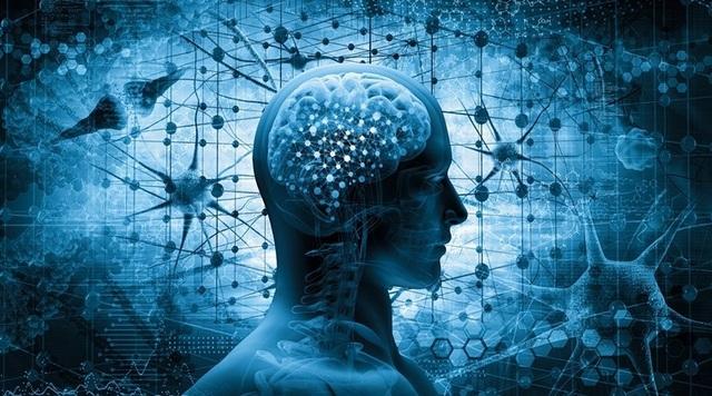 Người khỏe hơn có não bộ hoạt động tốt hơn - 1