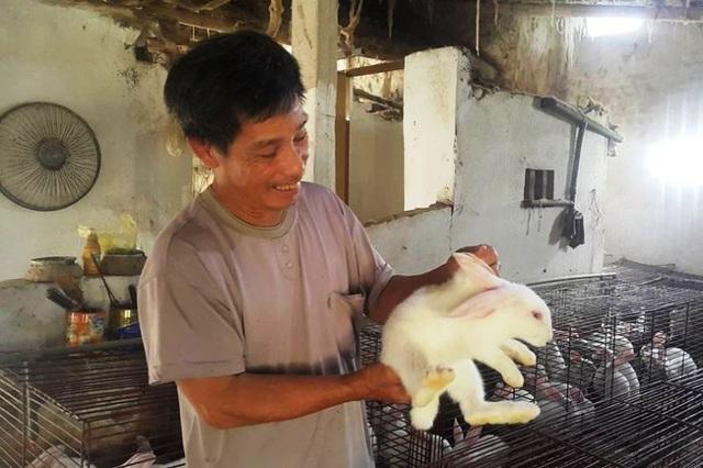 Bén duyên với nghề nuôi thỏ New Zealand hơn chục năm qua, ông Linh là một trong những người nuôi thỏ ngoại lớn nhất Ninh Bình hiện nay.