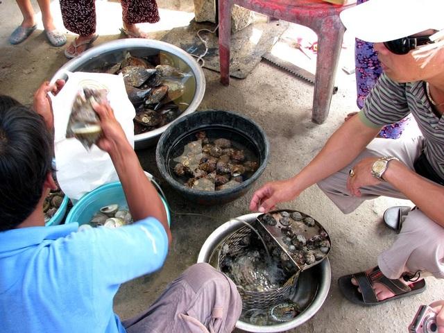 Những điểm đến ở Cù Lao Chàm mà du khách không nên bỏ qua - 11