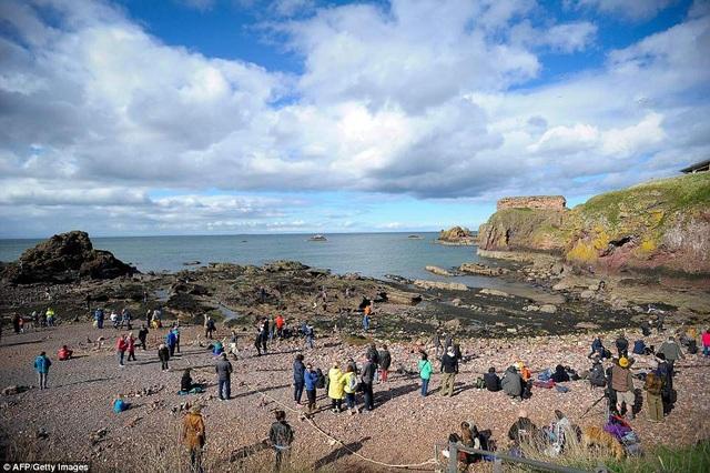 Những người tham gia dự thi và các khán giả cùng tập trung bên bờ biển của thị trấn Dunbar.
