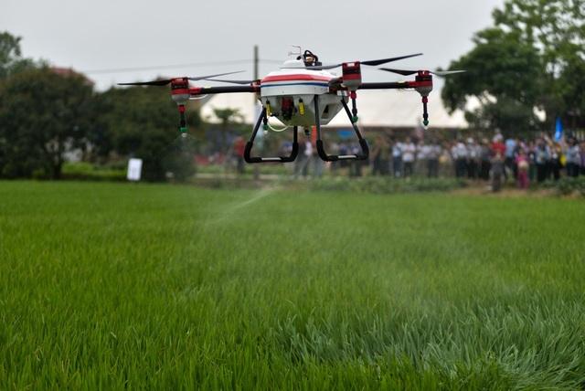 Hai chiếc drone trình diễn khả năng phun thuốc trừ sâu trên đồng lúa ở Bắc Ninh, thu hút khá nhiều người theo dõi.