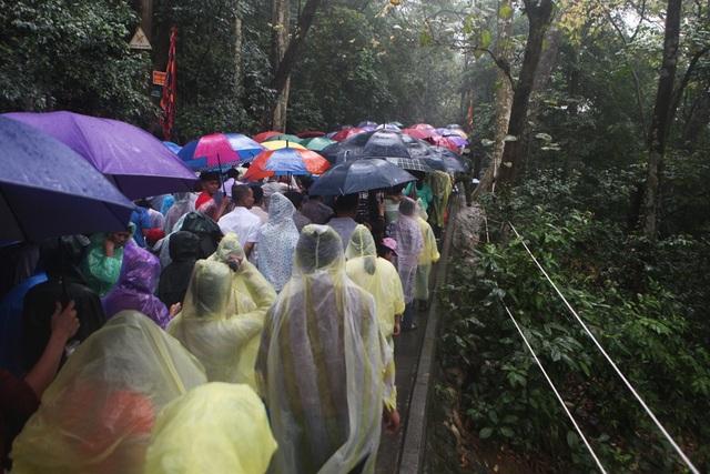 Hàng vạn người đội mưa về Đền Hùng dự quốc giỗ - 8