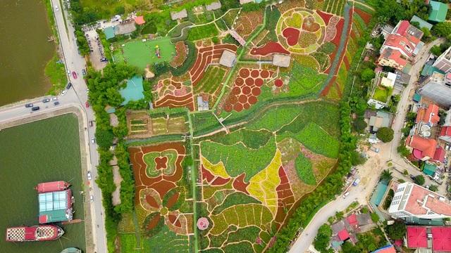 Ngắm nhìn khu vườn 70 000 m2 rực rỡ sắc hoa ở Hà Nội | Báo