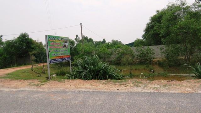 Để xảy ra tình trạng trên là do chính quyền địa phương phường Quảng Long đã có sự buông lỏng trong công tác quản lý đất đai
