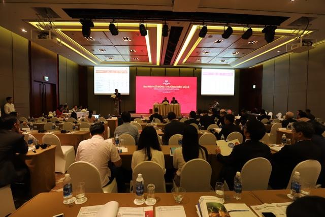 Số tiền huy động được từ đợt phát hành sẽ được sử dụng để triển khai dự án hiện hữu; phát triển quỹ đất tại TP HCM, Hà Nội và các khu vực lân cận; đầu tư bất động sản thương mại...
