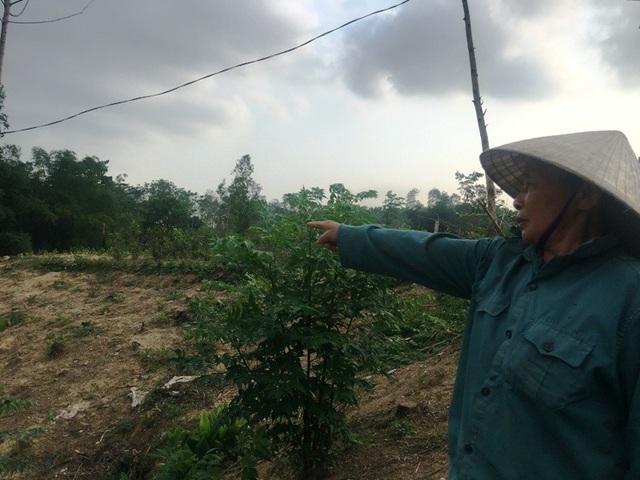 Bà Nguyễn Thị Chinh xót xa trước cảnh xơ xác khu đất hiện tại của gia đình