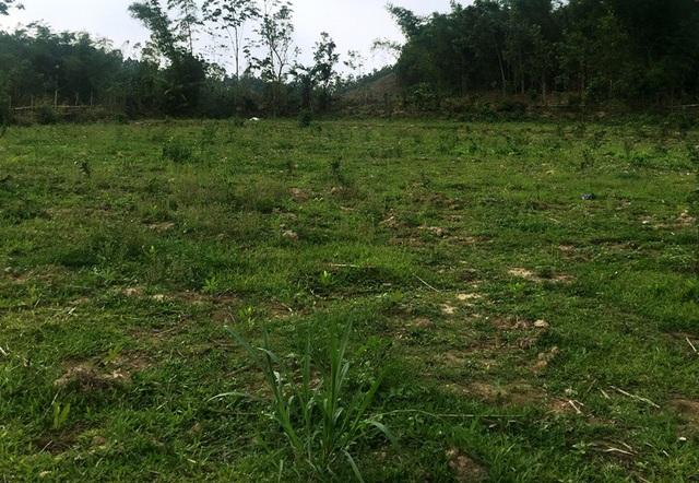 """Dự án bò sữa nghìn tỷ: Dân """"nhấp nhổm"""" trên chính mảnh đất của mình! - 3"""