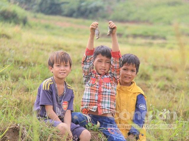 Trẻ em bắt chuột ở phía dưới chân núi