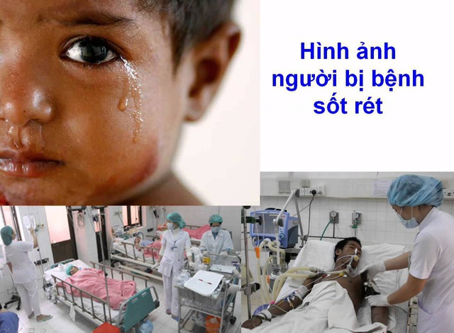 Hơn 10 tỉnh gia tăng người mắc sốt rét, dịch có thể quay trở lại? - 1