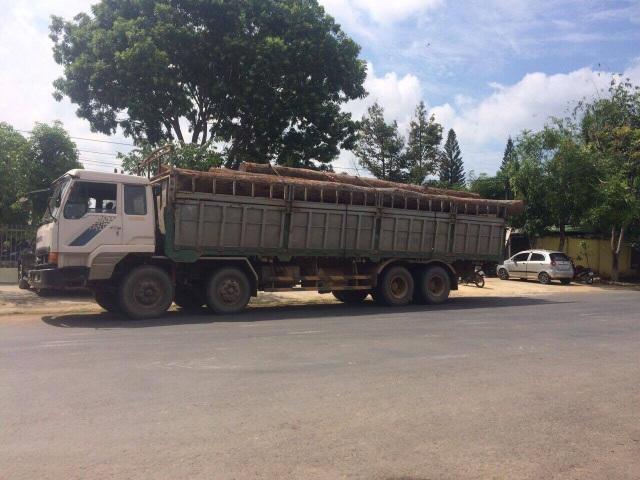 Một xe chở gỗ lậu đang bị tạm giữ để điều tra (ảnh D.N)