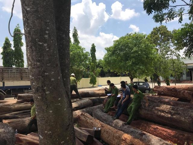 Khối lượng lớn gỗ lậu bị cơ quan công an phát hiện, bắt giữ