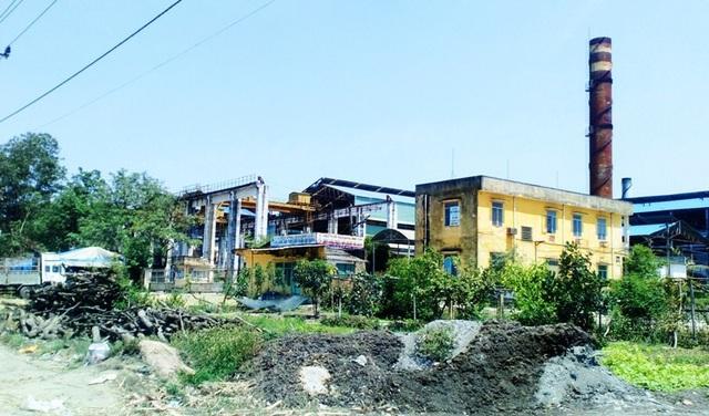 Khu sản xuất của Bisuco nhếch nhác.