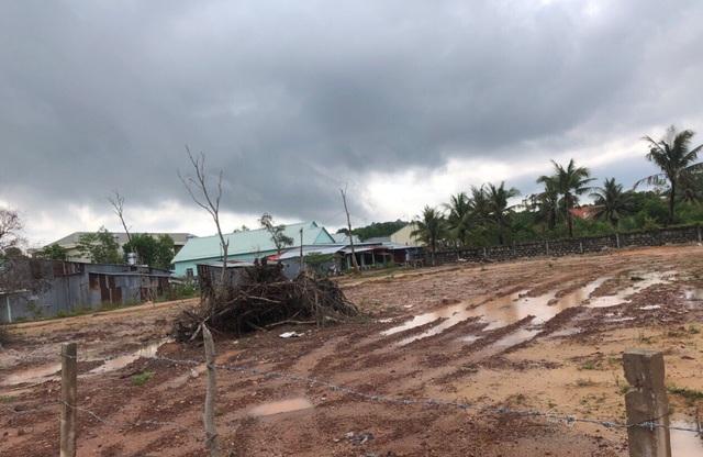 Hơn 4000m2 đất của gia đình ông Năm đã bị cướp để xây dựng 4 căn nhà ở kiên cố, trái pháp luật và một phần đất còn trống thuộc khu vực bao chiếm cất nhà, họ đã phân lô bán nền.