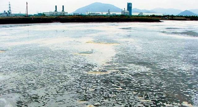 Hàng trăm doanh nghiệp bị thanh tra môi trường, Formosa nằm ngoài danh sách - 1