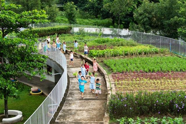 Những mái nhà màu xanh bao quanh 3 sân nhỏ bên trong tạo thành những sân chơi an toàn. Mới đây, một vườn rau thực nghiệm đã được thiết kế trên mái nhà . Có 5 loại rau khác nhau được trồng tại sân vườn có diện tích 200m2 nhằm phục vụ cho giáo dục nông nghiệp.