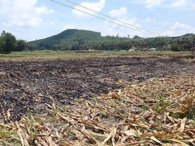 Nhiều người dân muốn giảm phí vì nhiều diện tích trồng hoa màu, rồi nắng hạn ruộng không có nước để thả vịt.