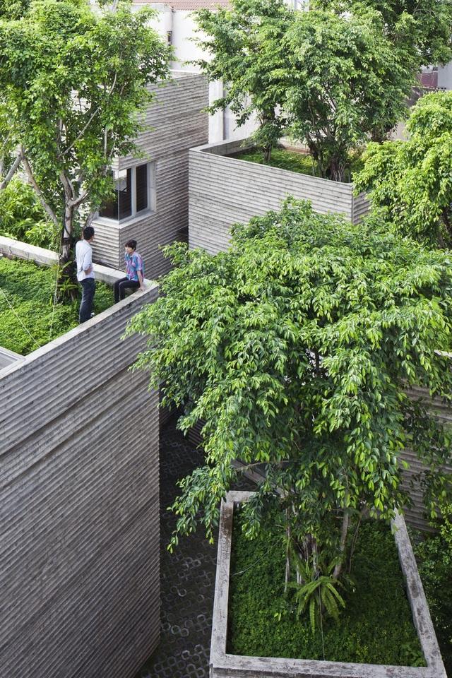 Từ nội thất, các không gian ngoài trời cho đến những khu vườn tràn ngập bóng cây, tất cả như hòa quyện vào căn nhà nhằm tạo ra một sự gắn kết tuyệt đối giữa không gian bên trong và bên ngoài.