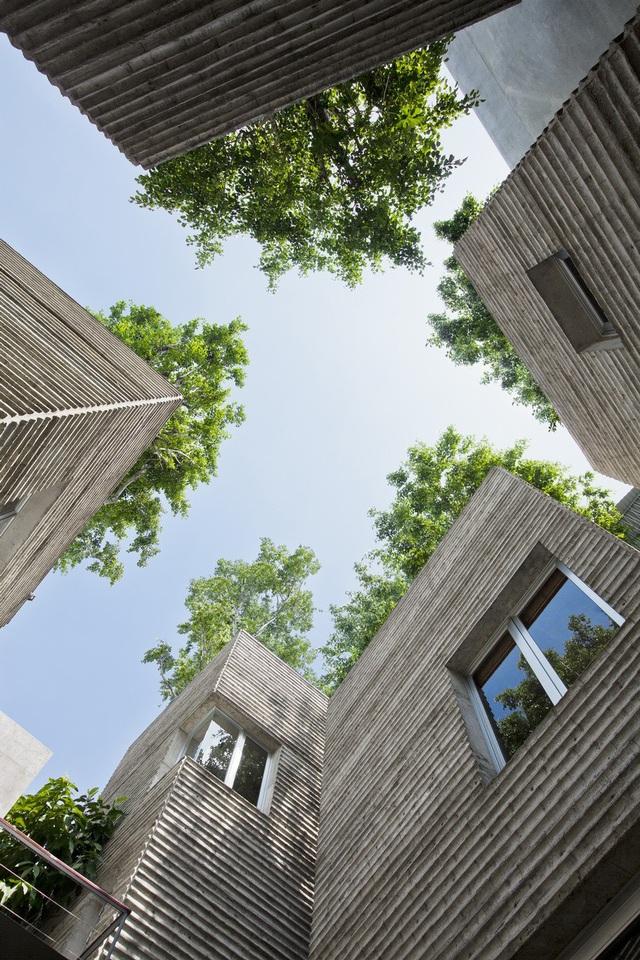 Dựa trên ý tưởng những chậu cây xanh, Tân Bình House for trees được chia làm 5 lăng trụ có thể trồng được cây xanh trên mái.