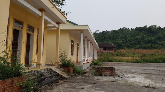 Cỏ cây mọc xung quanh ngôi trường.