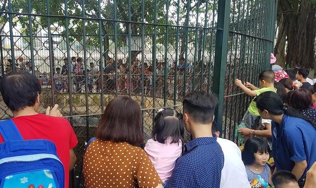 Vườn bách thú duy nhất của Hà Nội trở thành điểm vui chơi hiếm hoi phù hợp với trẻ nhỏ.