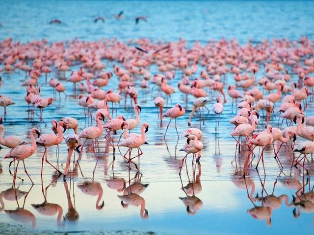 15 hồ có vẻ đẹp hút hồn nhất thế giới - 3