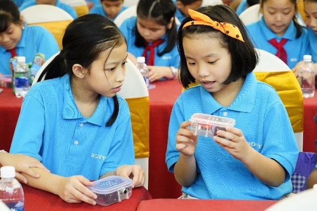Trẻ thường bị thu hút bởi các hoạt động, sự vật mới mẻ, khác lạ.