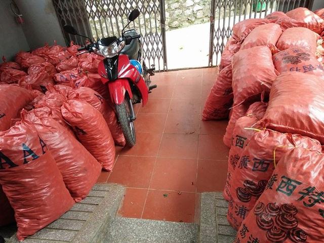 Củ mã thầy Trung Quốc ồ ạt về Việt Nam