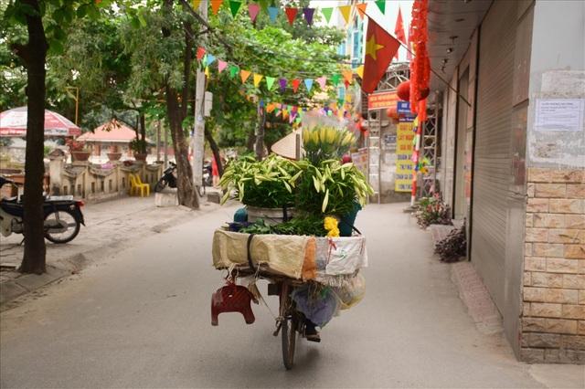 Dù giá có thăng trầm nhưng mức độ tiêu thụ loài hoa này rất nhanh vì thời vụ ngắn và mỗi năm chỉ có một lần. Trên những con phố ở Hà Nội, nơi đâu ta cũng có thể gặp một chiếc xe chở trên mình những bông hoa trắng tinh khôi.