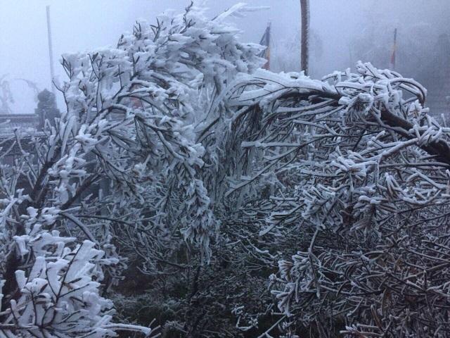 Băng tuyết bất ngờ phủ trắng đỉnh Fansipan - 5