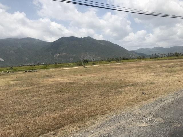 Đất phân lô đấu giá đang được chào giá 13 triệu đồng/m2 dọc đường Nguyễn Huệ.