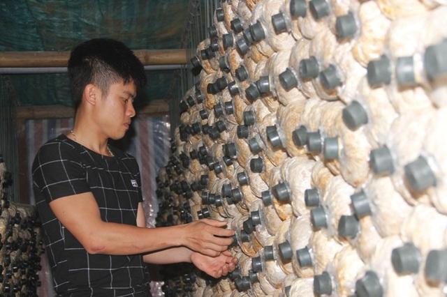 Chàng thanh niên trẻ Trần Văn Phúc khởi nghiệp ngay trên quê hương với cây nấm
