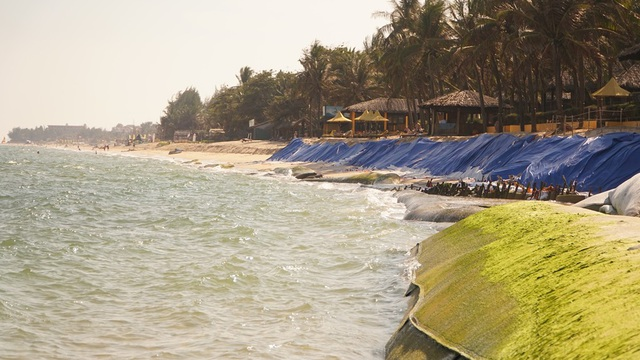 Cả một đoạn bãi biển dài bị ảnh hưởng