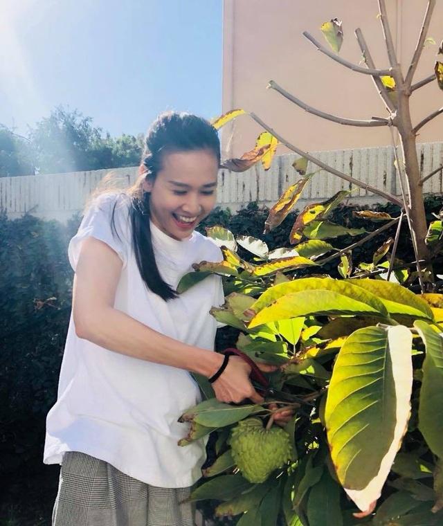 Dương Mỹ Linh vốn đam mê nấu ăn, làm vườn, vì thế cô lấy những đam mê này làm nguồn vui mỗi ngày.