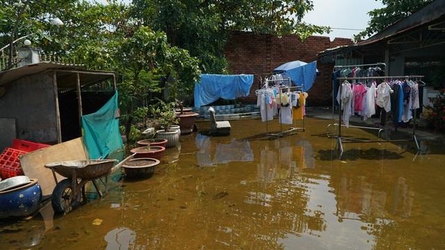 Nhà bà Cúc lúc bình thường không có mưa cũng bị ngập do nước đọng