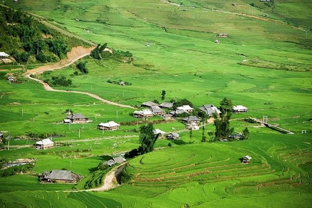 Khi lúa đã cấy đủ khắp các mặt ruộng, cả xứ Mù là một màu xanh ngắt.