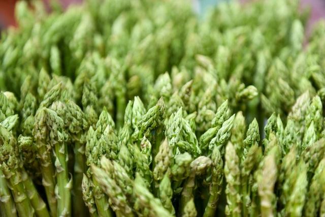 Măng được chia ra các loại 1, 2, 3 tùy theo độ to nhỏ. Măng xanh giá từ 60.000 đồng/kg, còn giá măng trắng có giá cao hơn, khoảng 120.000 đồng/kg. Với 1,2 ha măng tây trồng trong nhà lưới , mỗi ngày nông dân thu hoạch từ 60 - 70 kg, thu nhập khoảng 7 - 8 triệu đồng.