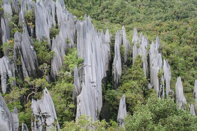 Những công viên quốc gia đẹp nhất Malaysia - 1