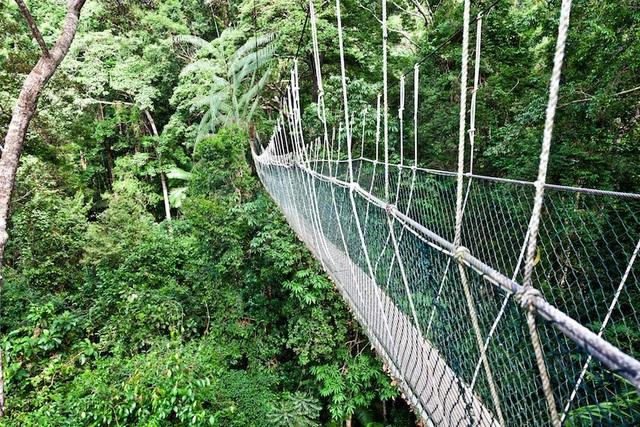 Những công viên quốc gia đẹp nhất Malaysia - 2