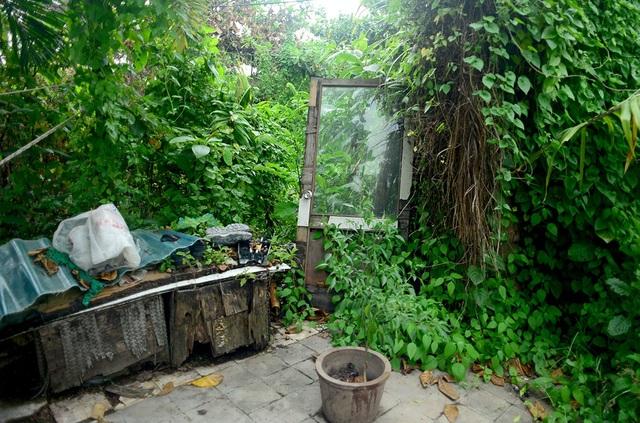 Khi bị thu hồi đất, những gia đình sống vất vưởng. Những mảng tường bị đập bỏ chỉ còn trơ cánh cửa nằm chỏng chơ trong bụi rậm.