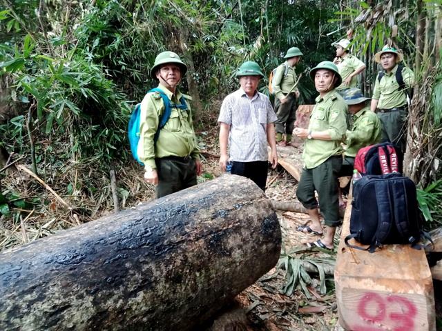Lãnh đạo ngành nông nghiệp Quảng Nam khẳng định, kiểm lâm nghỉ việc nhiều trong thời gian qua không phải vì áp lực giữ rừng!